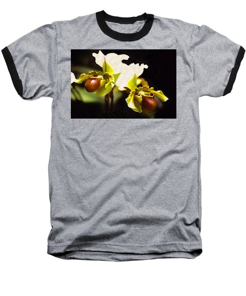 Paphiopedilum Orchid Baseball T-Shirt by Rosalie Scanlon
