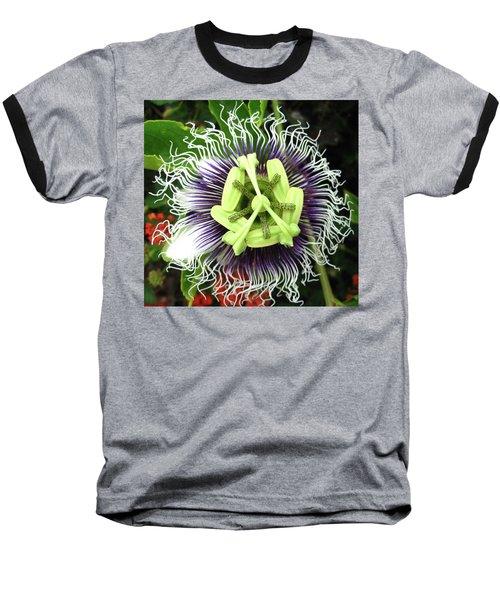 Passion Flower Baseball T-Shirt by Mary Ellen Frazee