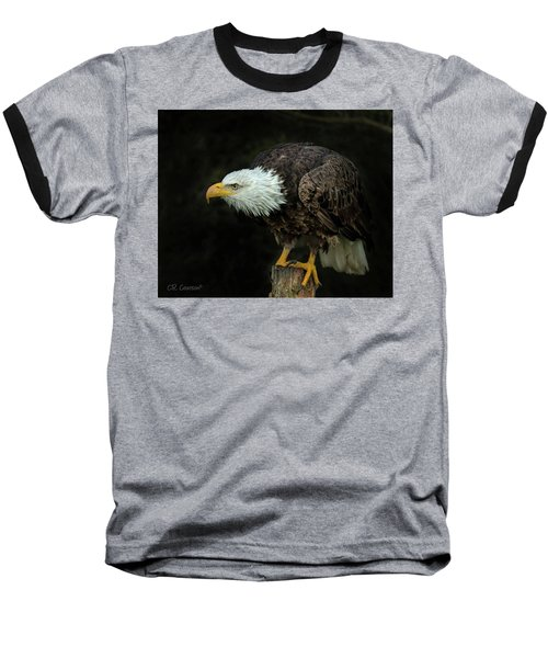 Perched Bald Eagle Baseball T-Shirt by CR Courson