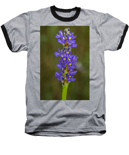Pickerel Weed Baseball T-Shirt by Christopher L Thomley