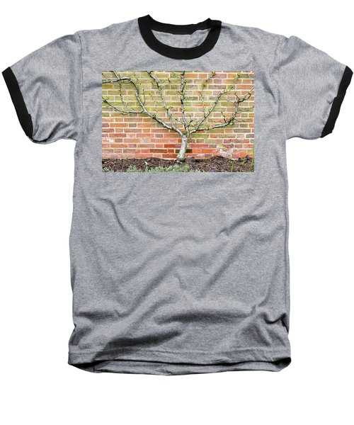 Pier Railings Baseball T-Shirt