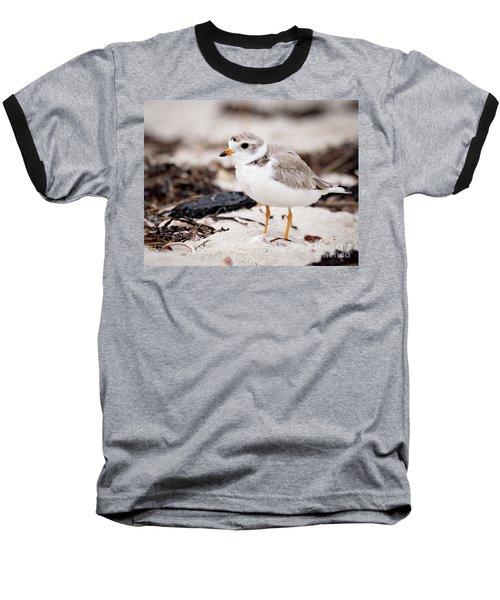 Piping Plover Baseball T-Shirt