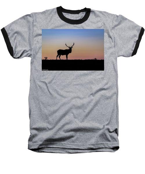 Point Reyes Elk Baseball T-Shirt