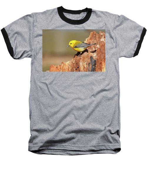 Prothonotary Warbler Baseball T-Shirt
