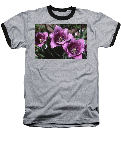 Purple Flowers Two  Baseball T-Shirt by Lyle Crump