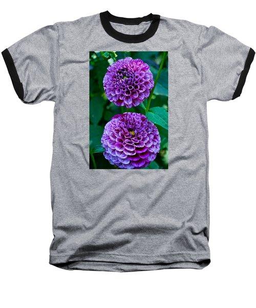 Purple Passion Dahlia  Baseball T-Shirt