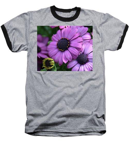 African Daisy Baseball T-Shirt