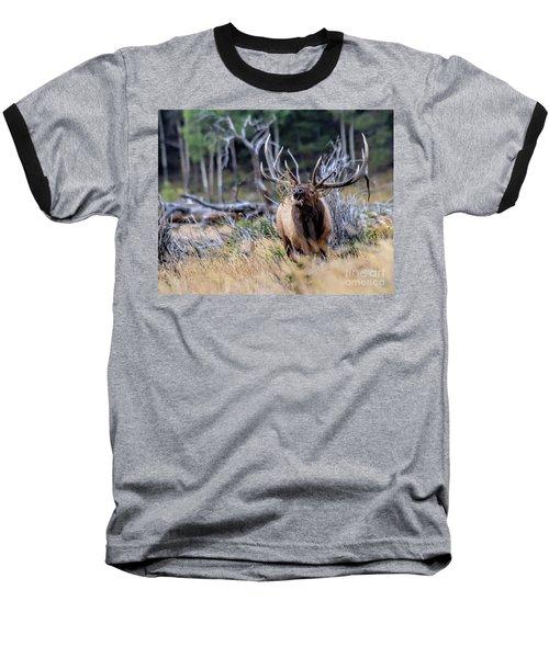 Raging Bull Baseball T-Shirt