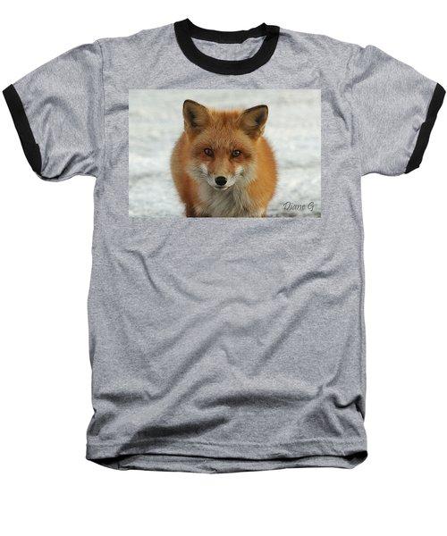 Red Fox Baseball T-Shirt by Diane Giurco