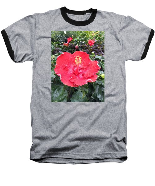 Red Hibiscus Baseball T-Shirt by Kay Gilley