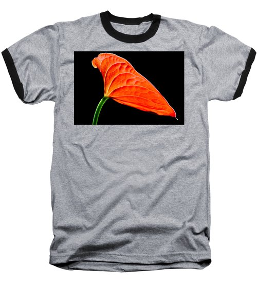 red Lily blossom Baseball T-Shirt