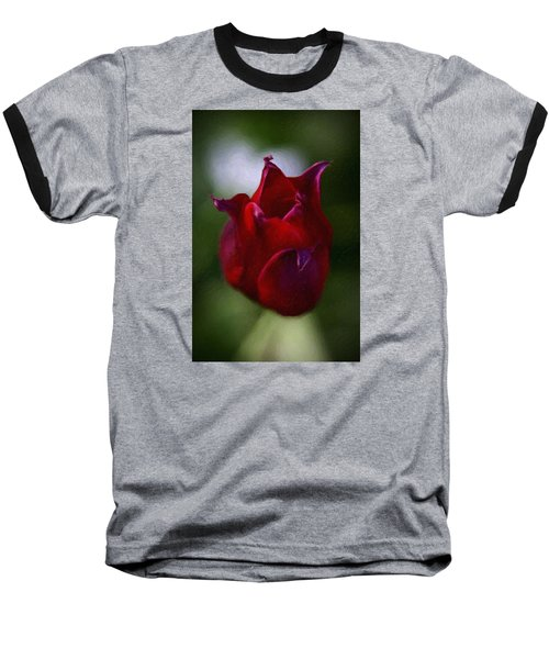 Red Rose Baseball T-Shirt by Andre Faubert
