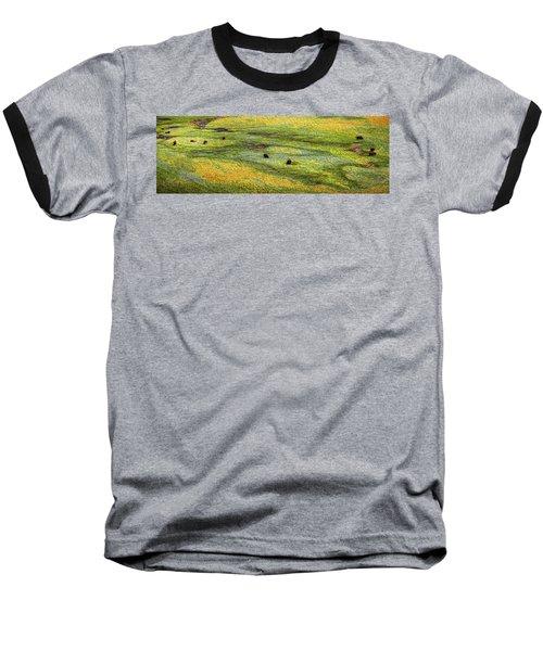 Renaissance Cave Bison Baseball T-Shirt