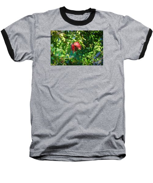 Ripe Pomegranate On The Tree In Jerusalem During Sukkoth Baseball T-Shirt