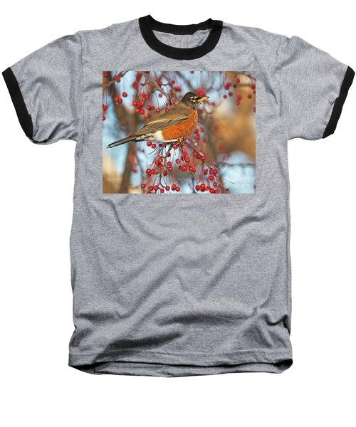 Baseball T-Shirt featuring the photograph Robin.. by Nina Stavlund