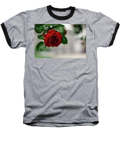 Roses In The City Park Baseball T-Shirt