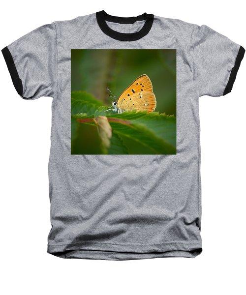 Baseball T-Shirt featuring the photograph Scarce Copper by Jouko Lehto