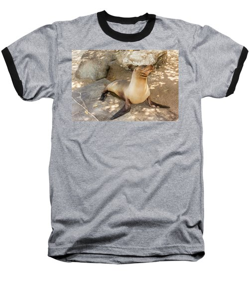 Baseball T-Shirt featuring the photograph Sea Lion On The Beach, Galapagos Islands by Marek Poplawski