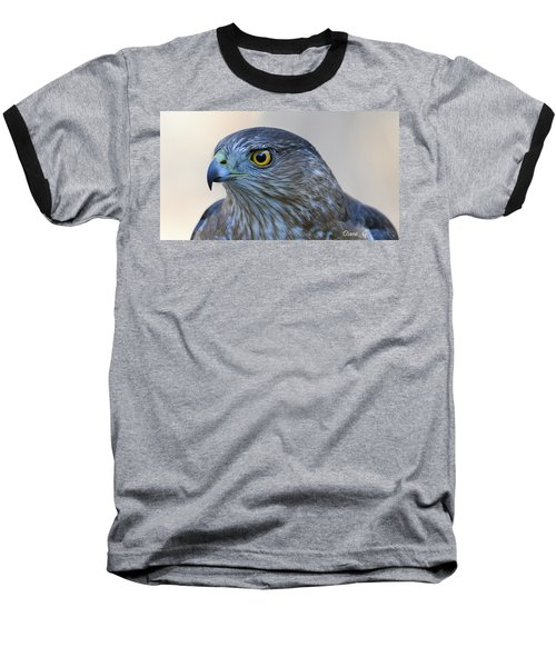 Sharp-shinned Hawk Baseball T-Shirt by Diane Giurco