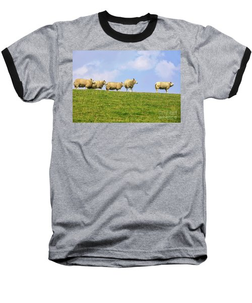 Baseball T-Shirt featuring the photograph Sheep On Dyke by Patricia Hofmeester