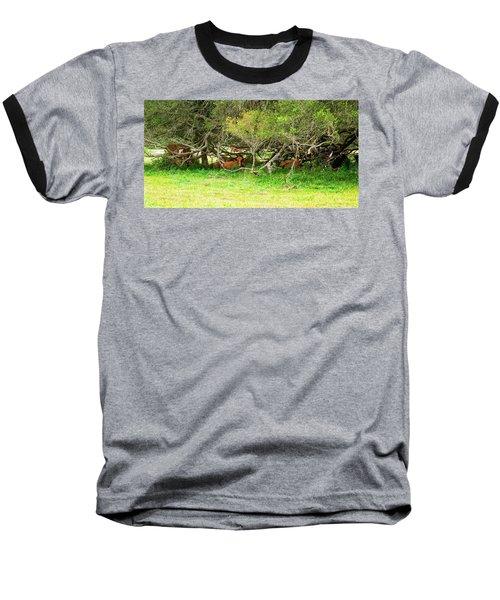 Shelter From The Sun Baseball T-Shirt