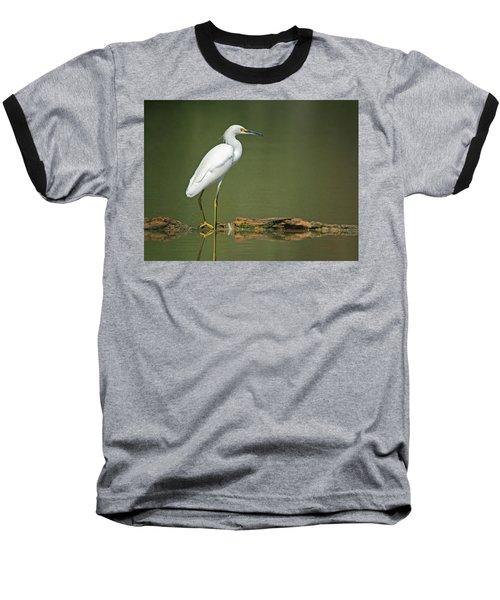Snowy Egret Baseball T-Shirt by Tam Ryan