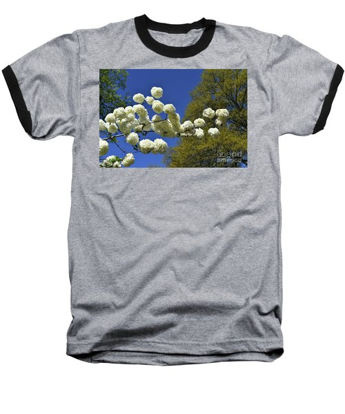 Baseball T-Shirt featuring the photograph Snowballs by Skip Willits