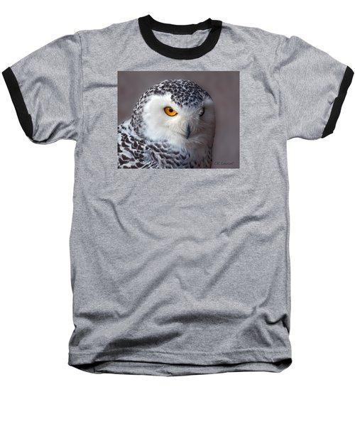 Snowy Owl Portrait Baseball T-Shirt