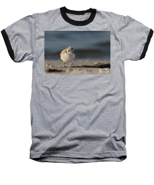 Snowy Plover Baseball T-Shirt