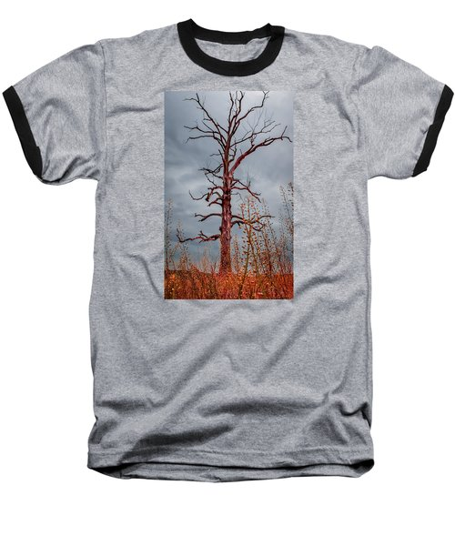 Ominous Baseball T-Shirt by Wayne King