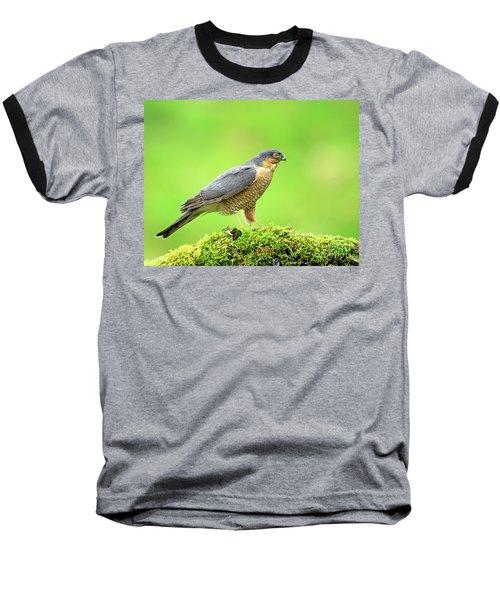 Sparrowhawk Baseball T-Shirt