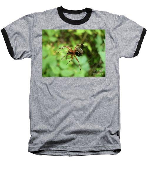 Spider  Baseball T-Shirt