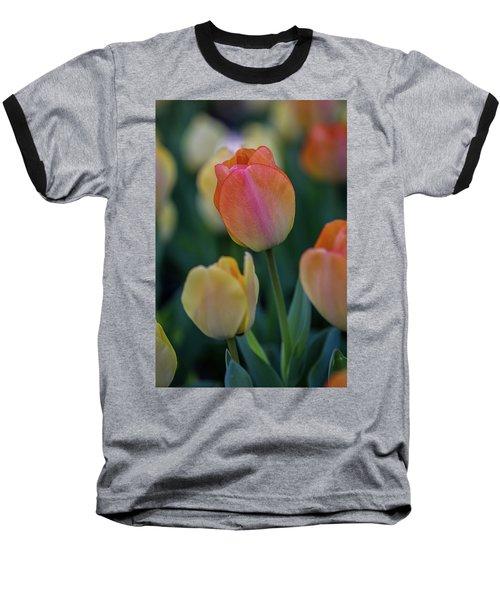 Spring Tulip Baseball T-Shirt