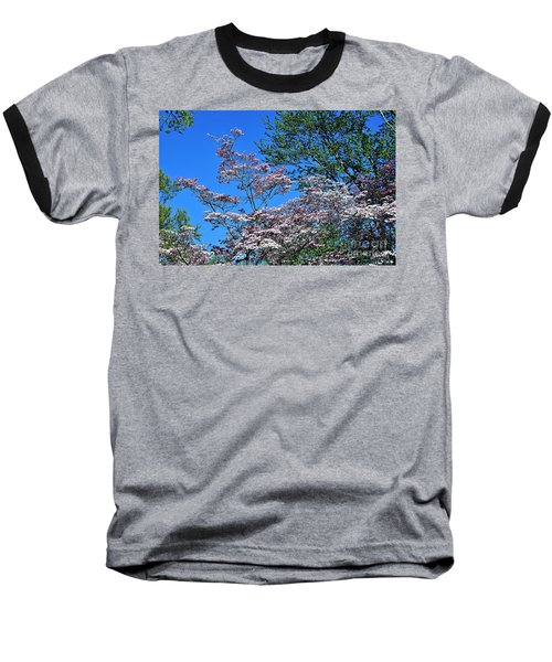 Springtime In Louisville Baseball T-Shirt