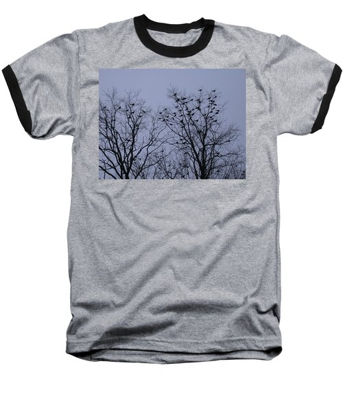 Starlings Baseball T-Shirt