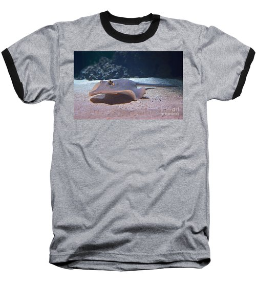 Stingray Baseball T-Shirt