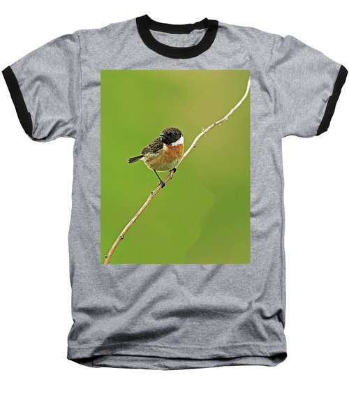 Baseball T-Shirt featuring the photograph Stonechat by Paul Scoullar