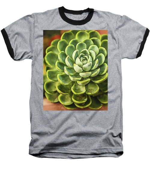 Succulent Baseball T-Shirt