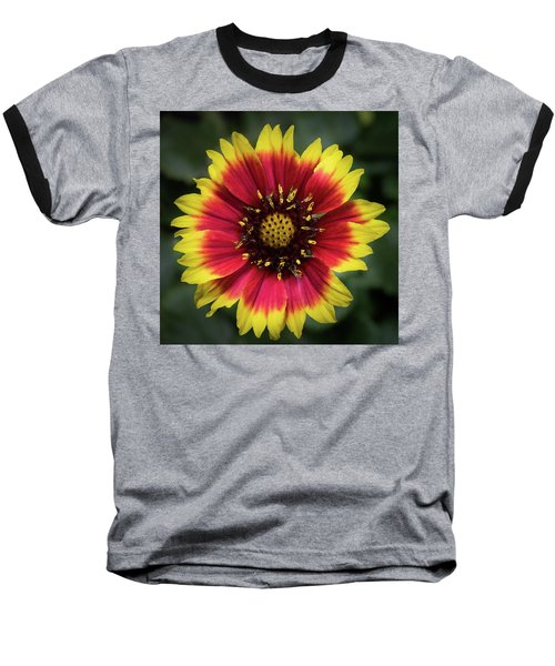 Sunflower Baseball T-Shirt
