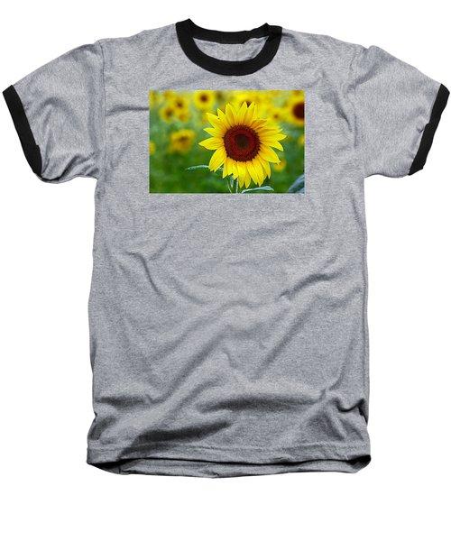 Sunflower Time Baseball T-Shirt by Karen McKenzie McAdoo
