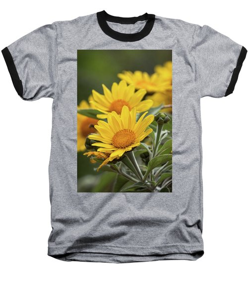 Baseball T-Shirt featuring the photograph Sunflowers  by Saija Lehtonen