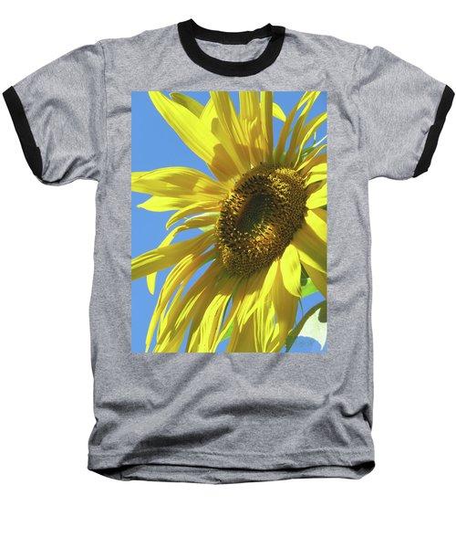 Sunshine In The Garden 28 Baseball T-Shirt by Brooks Garten Hauschild