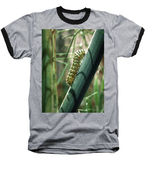 Swallowtail Caterpillar Baseball T-Shirt