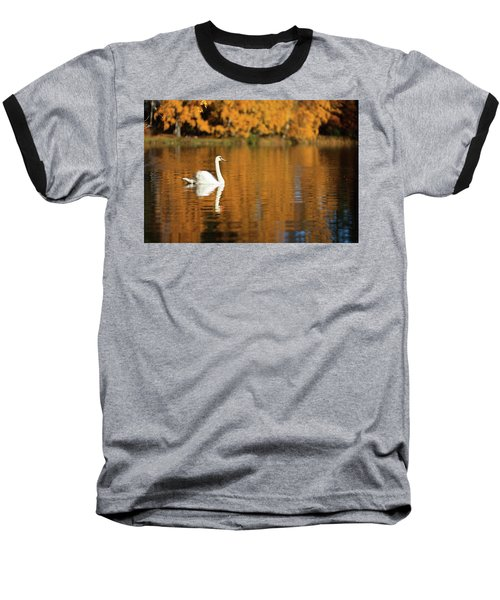 Swan On A Lake Baseball T-Shirt by Teemu Tretjakov