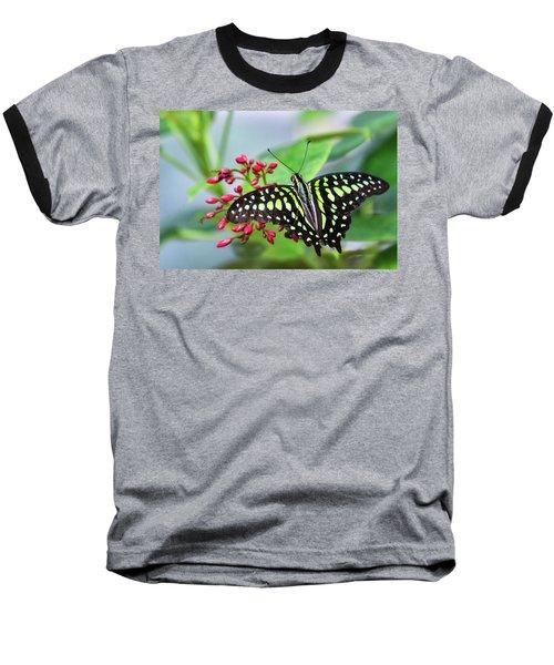 Baseball T-Shirt featuring the photograph Tailed Green Jay Butterfly  by Saija Lehtonen