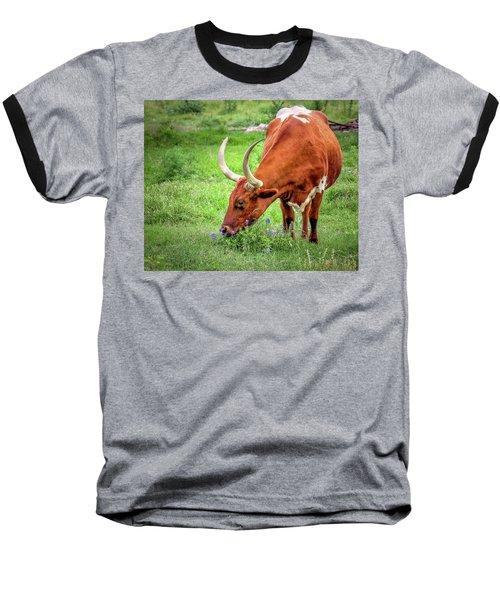 Texas Longhorn Grazing Baseball T-Shirt