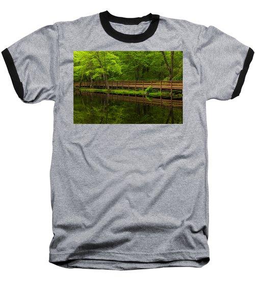 The Bridge Baseball T-Shirt by Karol Livote