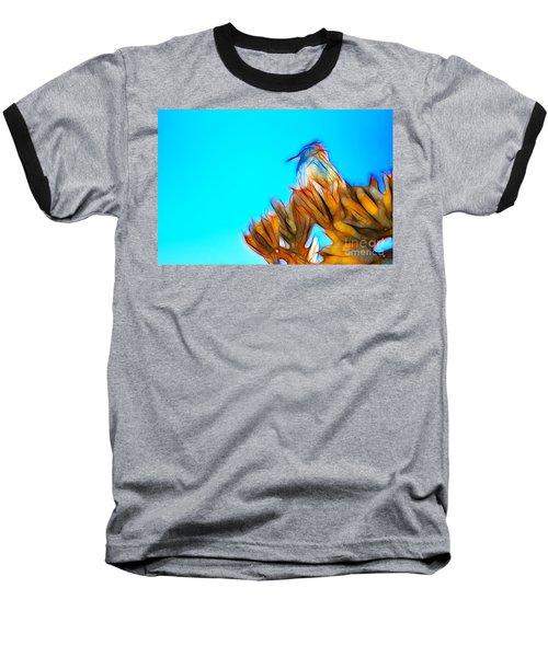 The Cactus Wren Baseball T-Shirt
