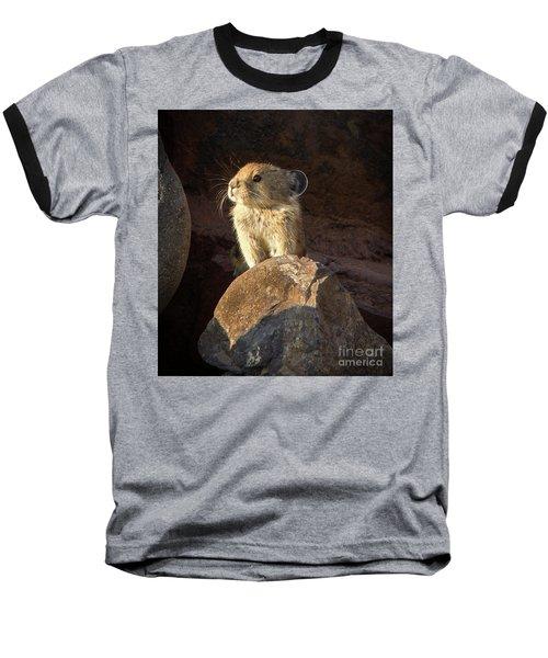 The Coast Is Clear Wildlife Photography By Kaylyn Franks Baseball T-Shirt