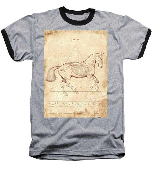 The Horse's Canter Revealed Baseball T-Shirt by Catherine Twomey
